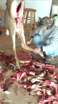 Dismembering deer legs