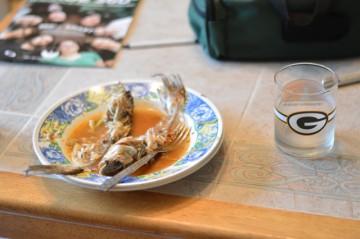 Catfish devoured